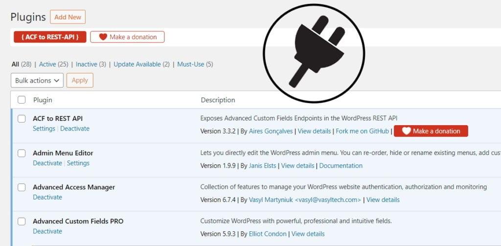 website support services plugin update